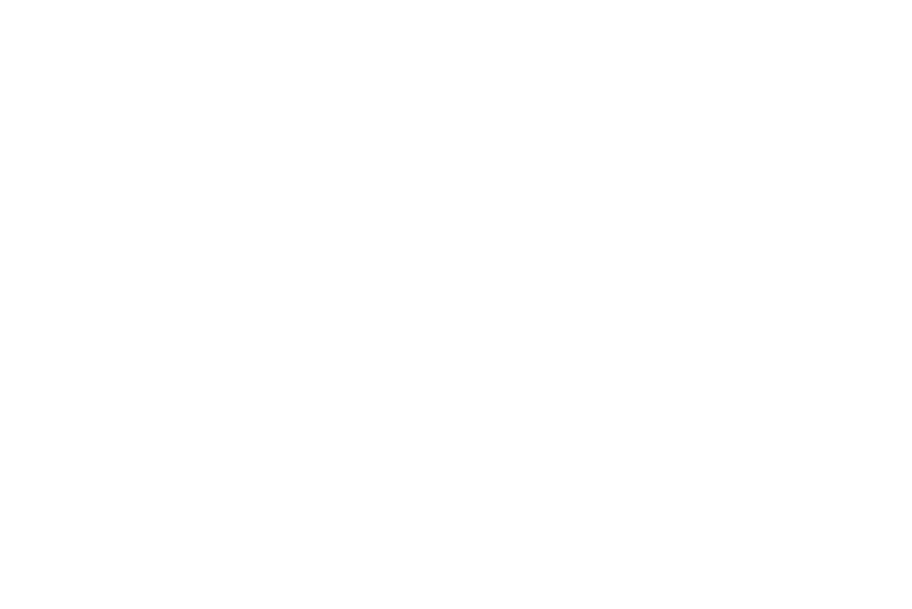 Di Arie Logo